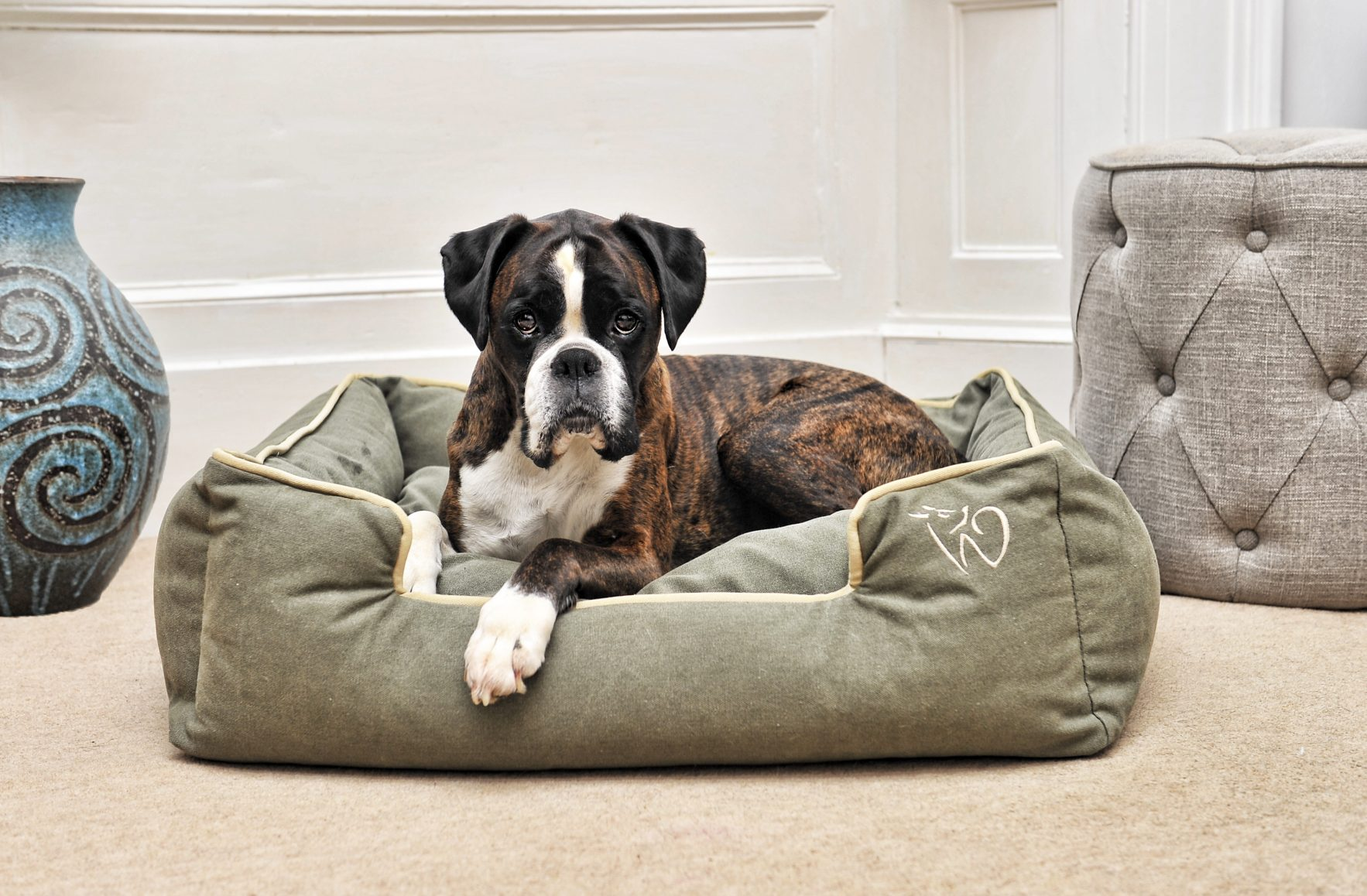 Picture of: Large Luxury Dog Beds Accessories Uk Wolfybeds