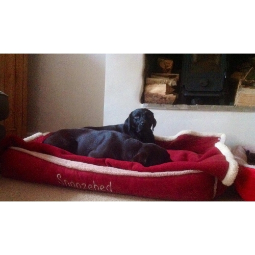 Winterberry Red Fleece Luxury Cradle Dog Bed Size Xl And Xxl Wolfybeds