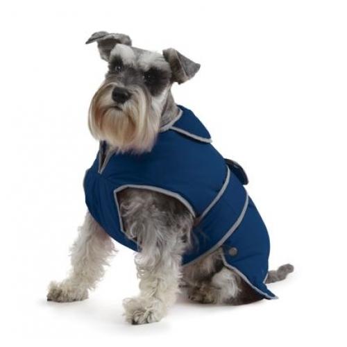 Good Dog Walks Oxford