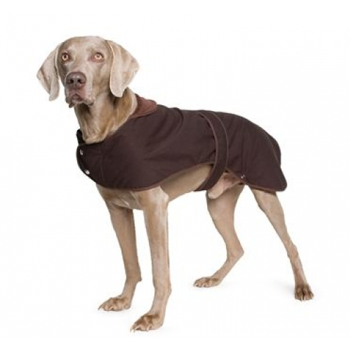 barbour dog wax jacket